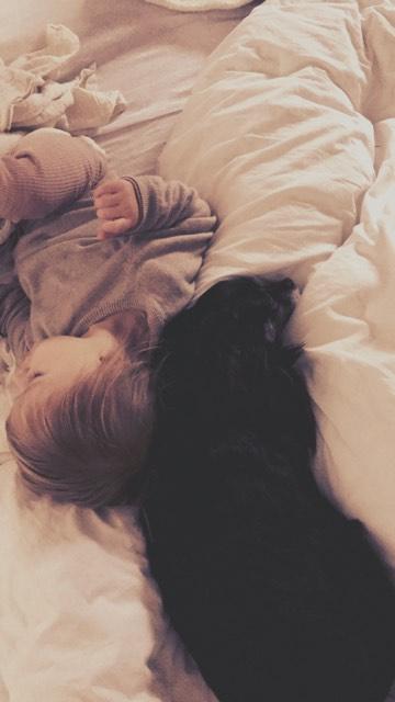 IDYLLE, drôle de vie pour cette Chihuahua de 4 ans !! Tetbec10