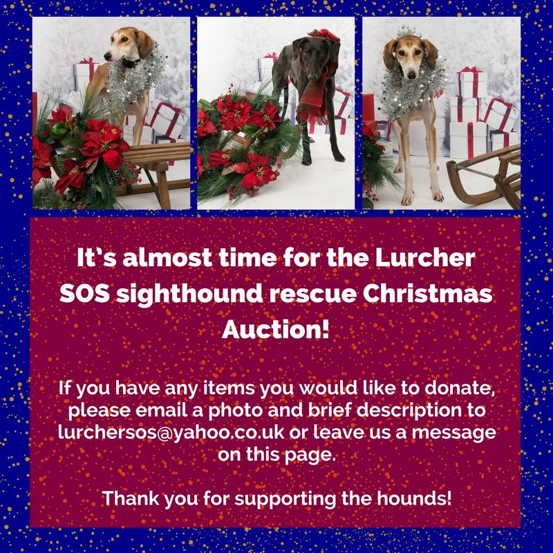 Our Christmas 2017 Auction on Facebook 23031710