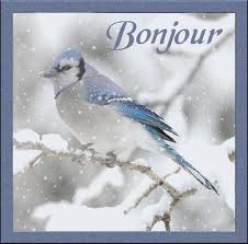 vendredi 29 décembre Bonjou14
