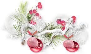 Mercredi 20 décembre  Tube_n11