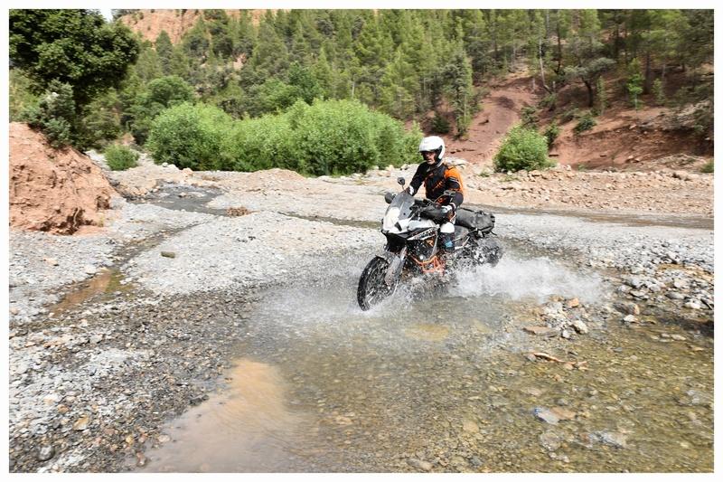 Vos plus belles photos de motos - Page 30 Bibi11