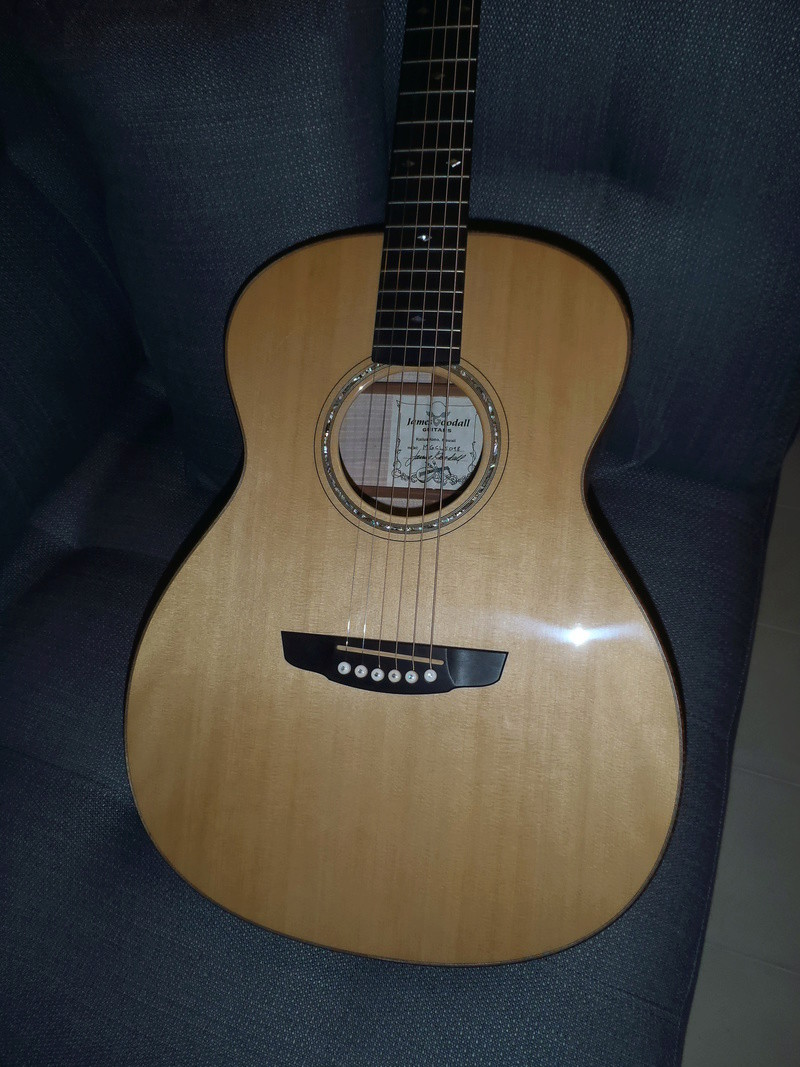 Les Guitares Goodall (partie 1) - Page 3 P3270520
