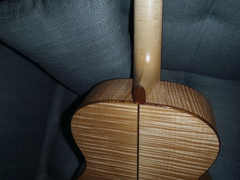 Les Guitares Goodall (partie 1) - Page 3 P3270522