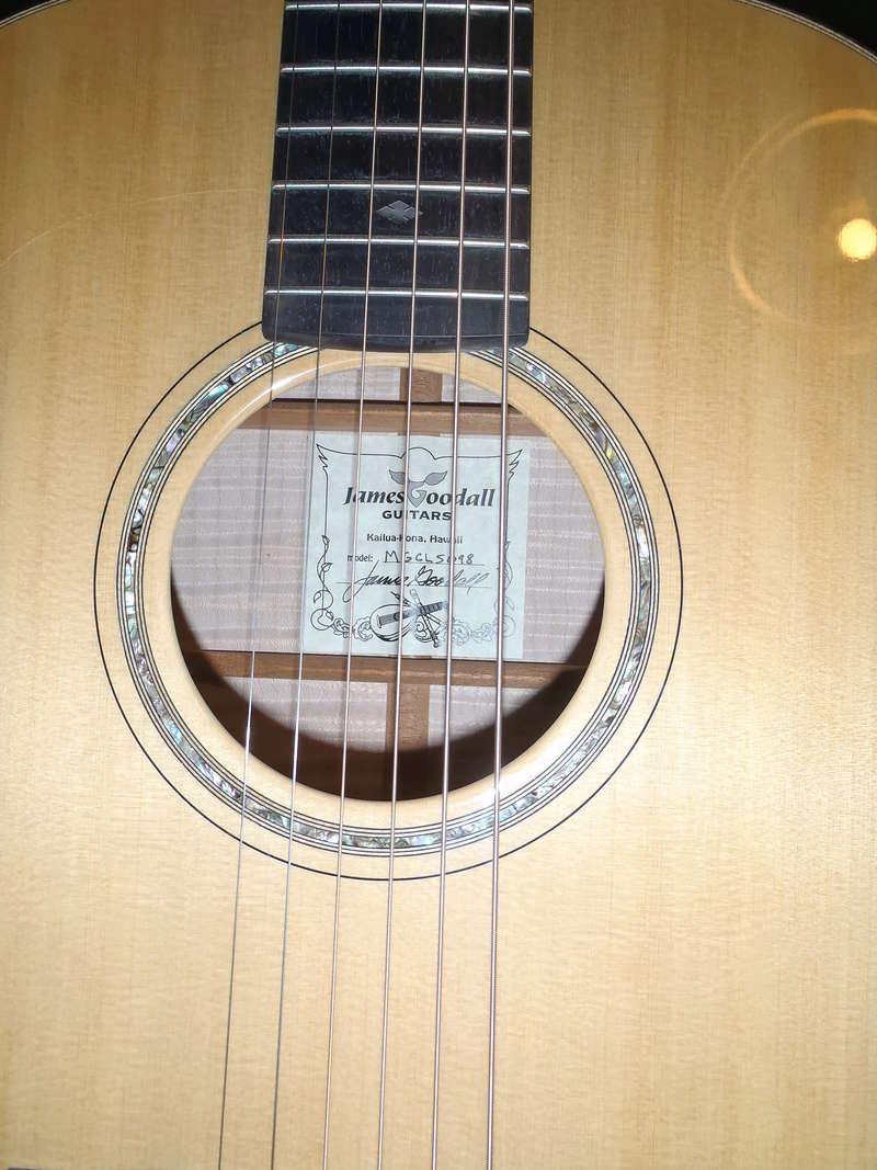 Les Guitares Goodall (partie 1) - Page 3 P3270523