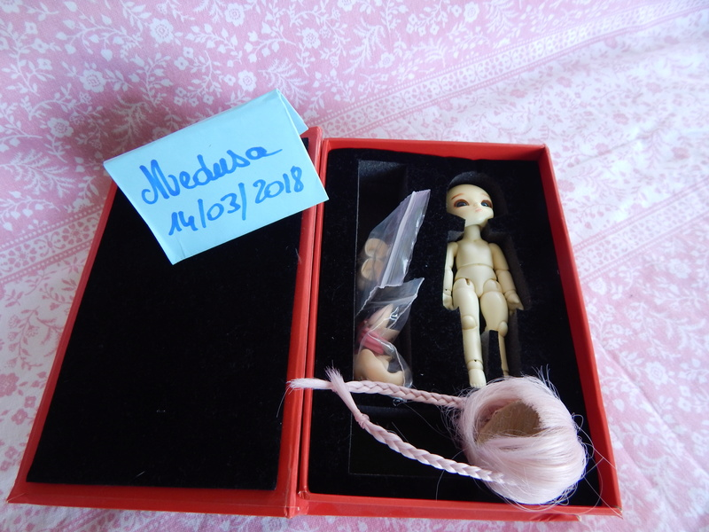 [vends] Pukipuki+faceplate/mains/pieds cochon+ parts poing Dscn6411