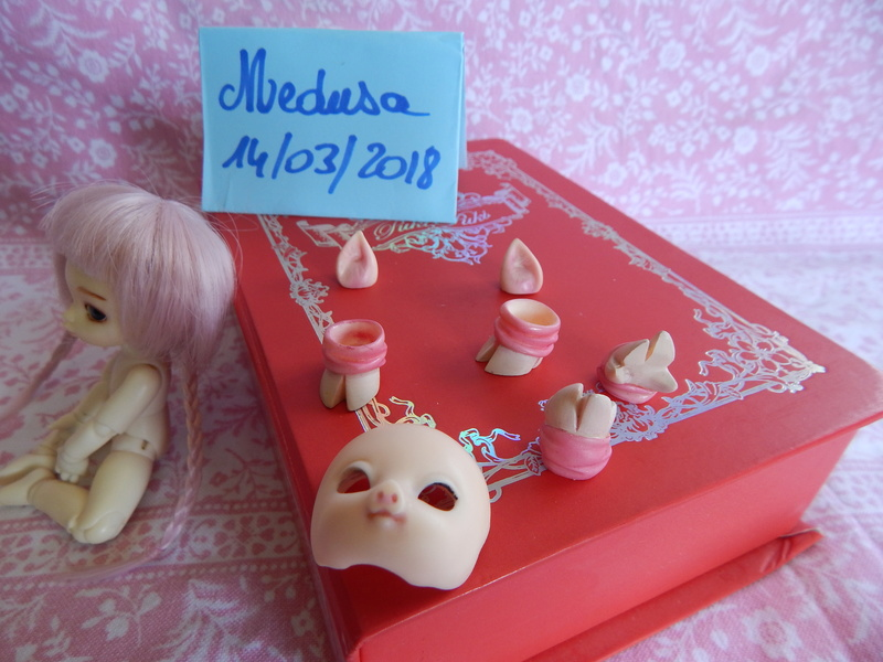 [vends] Pukipuki+faceplate/mains/pieds cochon+ parts poing Dscn6412
