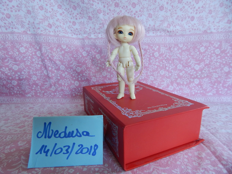 [vends] Pukipuki+faceplate/mains/pieds cochon+ parts poing Dscn6415