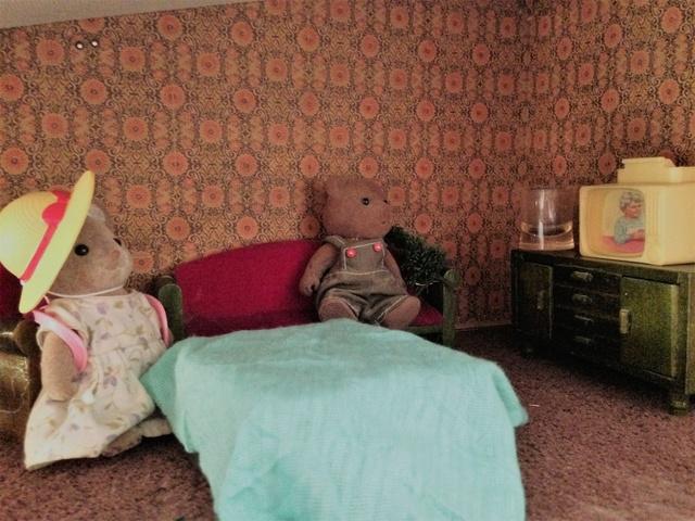 Maison Lundby et autres maisons de poupées de Lilas et Marie... - Page 3 Img_1835