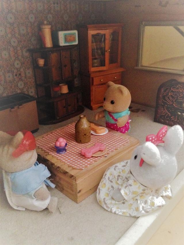 Maison Lundby et autres maisons de poupées de Lilas et Marie... - Page 3 Img_1843