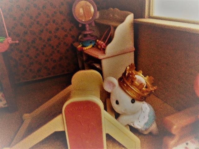 Maison Lundby et autres maisons de poupées de Lilas et Marie... - Page 3 Img_1846