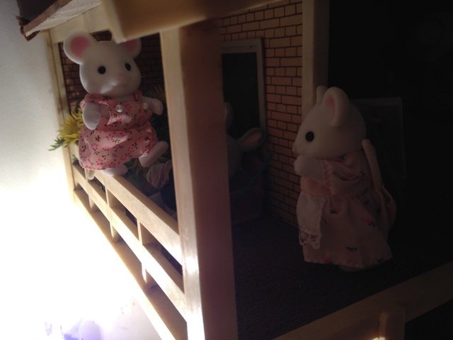 Maison Lundby et autres maisons de poupées de Lilas et Marie... - Page 3 Img_1939