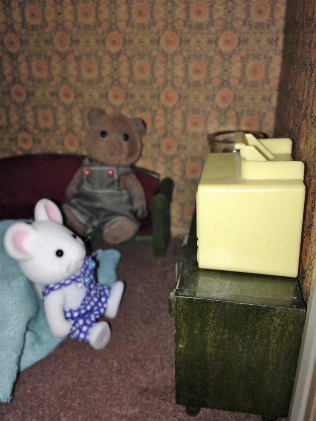 Maison Lundby et autres maisons de poupées de Lilas et Marie... - Page 3 Img_1945