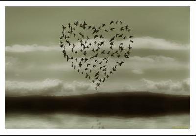la nature a du coeur (jeu) - Page 6 Captu176