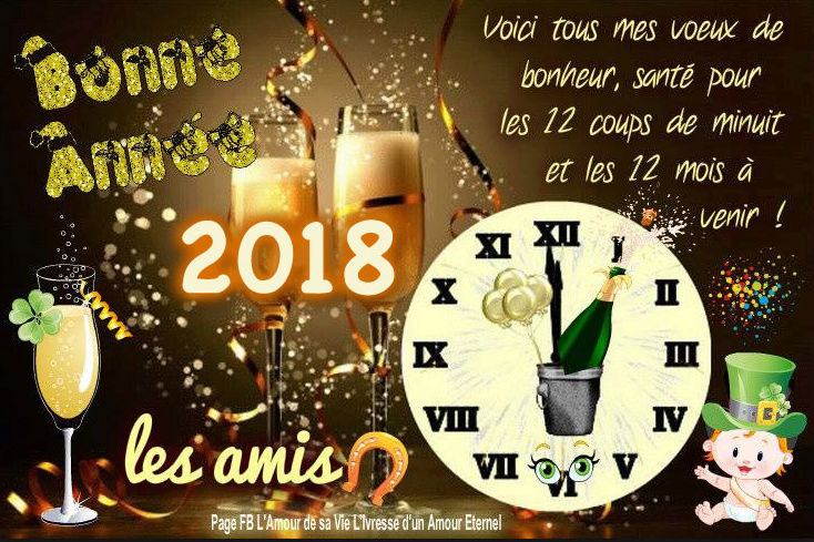 bonne année 2018 Captur46