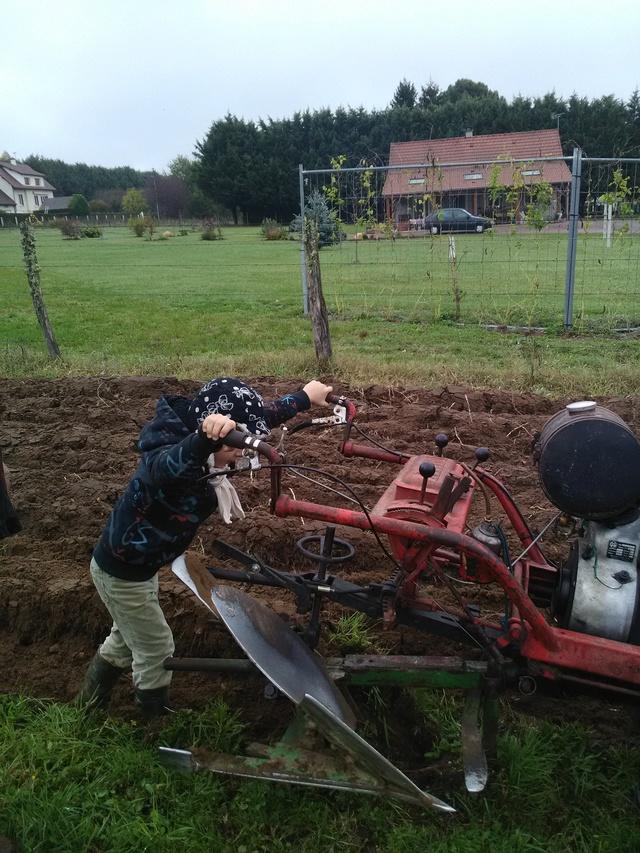Aebi - (Recherche ) MOTOCULTEUR AEBI AM 80 Diesel Img_2010