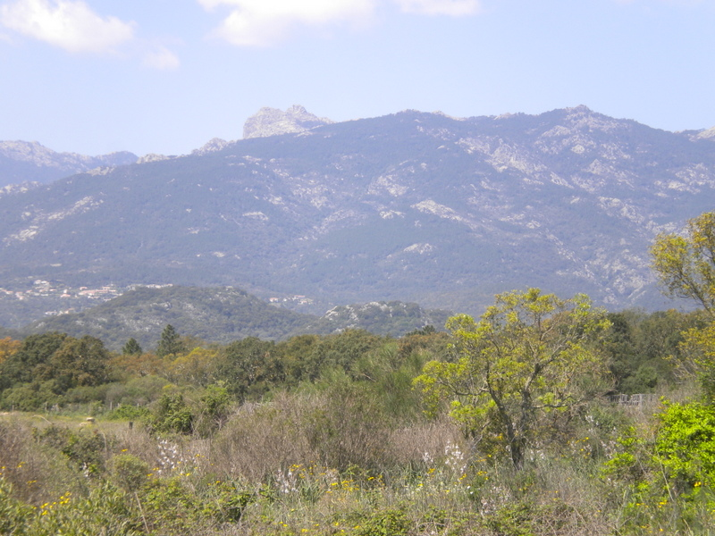 ma montagne Dscn4240