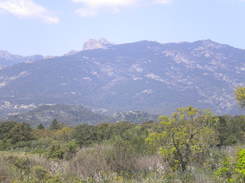 ma montagne Dscn4241