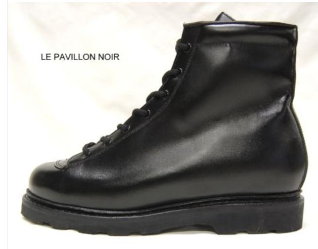 Bottes et chaussures Captur33