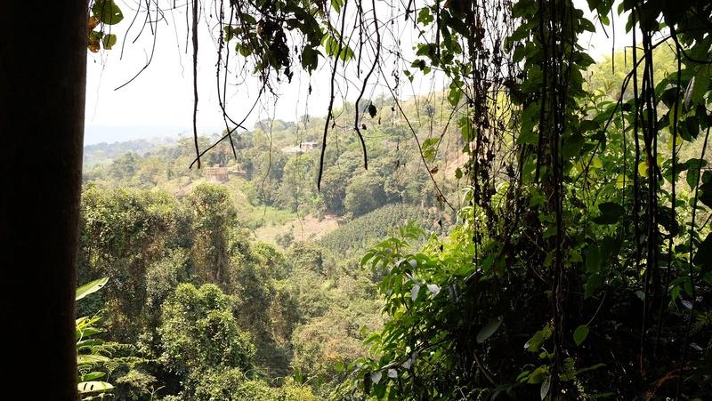 Le 10.02.2018 San Augustin (site classé au patrimoine mondial par l'UNESCO). Dscf4321
