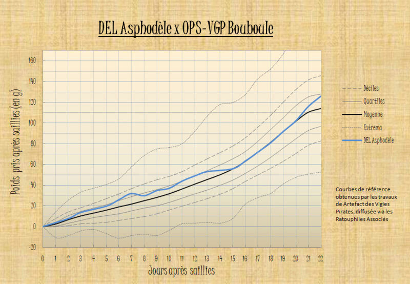 OPS-VGP Bouboule x DEL Asphodèle - Page 2 Courbe15