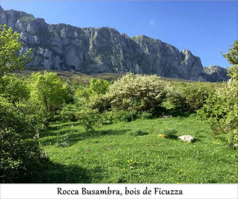 Escapades siciliennes (20-27 avril)  J2i10