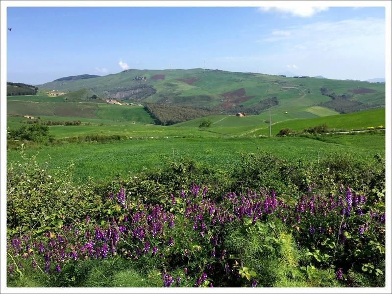Escapades siciliennes (20-27 avril)  - Page 2 J3b10