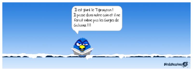 """proposition de rencontre et balade le 26mars """"Rennes le Chateau"""" 27-02-11"""
