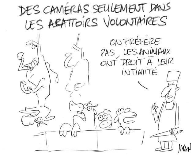 Actu en dessins de presse - Attention: Quelques minutes pour télécharger - Page 15 33769810