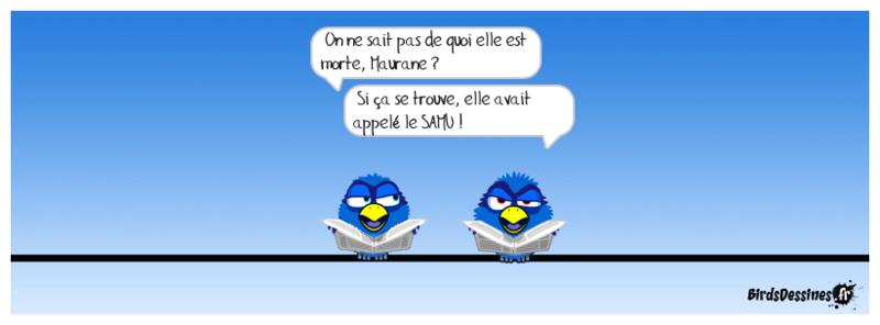 Actu en dessins de presse - Attention: Quelques minutes pour télécharger - Page 15 Boudu135
