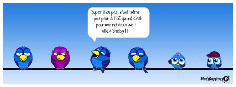 Balade pour Shelsy Shelsy10
