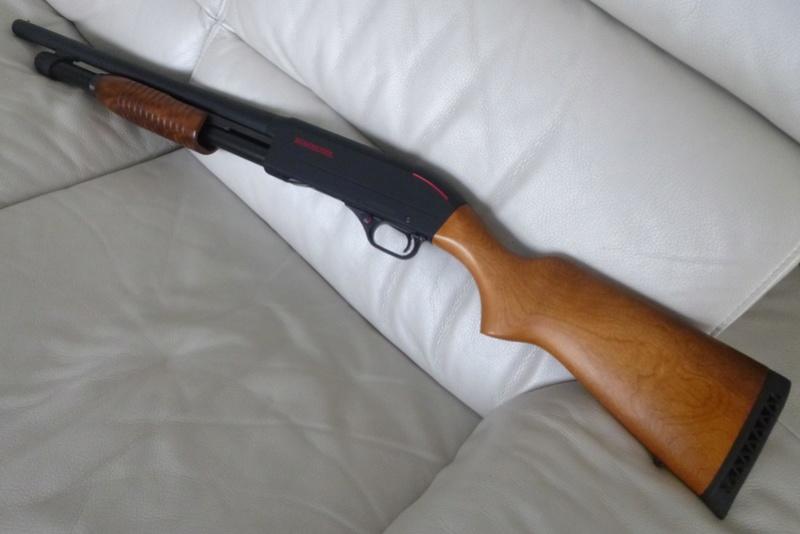 Mon Winchester SXP BOIS P1030113