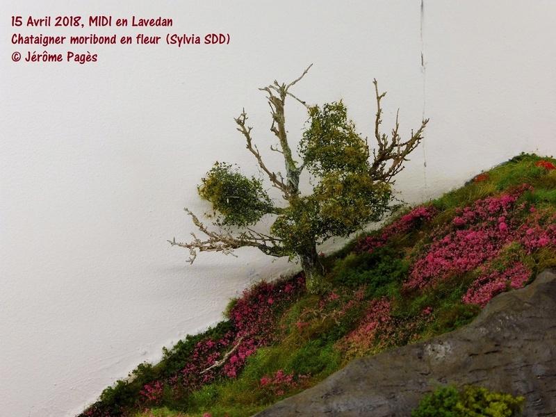 MIDI en Lavedan - Page 9 R2018_29