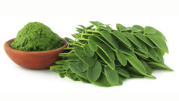 Le Moringa : la plante aux multiples vertus  Moring11