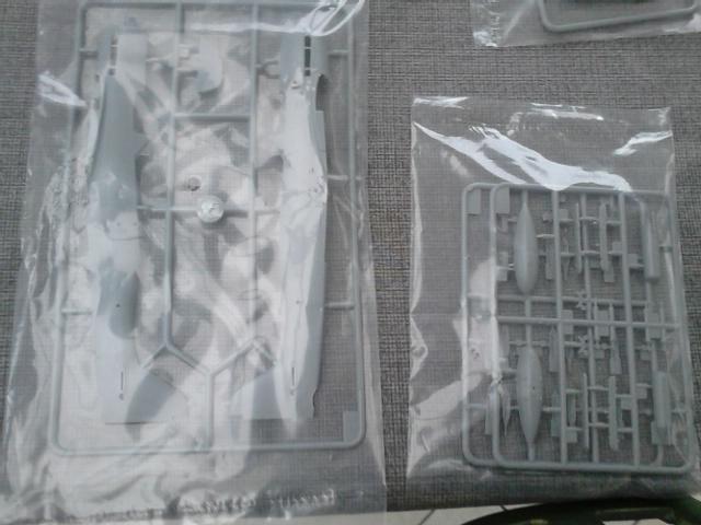 Luftwaffe 46 et autres projets de l'axe à toutes les échelles(Bf 109 G10 erla luft46). - Page 11 Dsc_4534