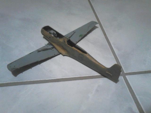 Luftwaffe 46 et autres projets de l'axe à toutes les échelles(Bf 109 G10 erla luft46). - Page 18 Dsc_4855