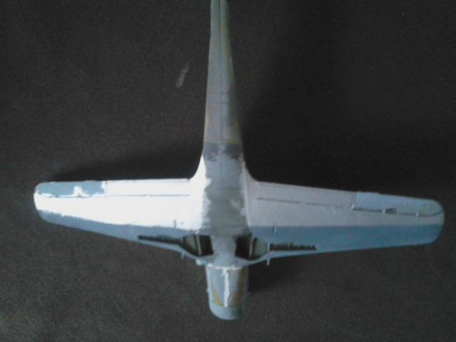 Luftwaffe 46 et autres projets de l'axe à toutes les échelles(Bf 109 G10 erla luft46). - Page 19 Dsc_4937