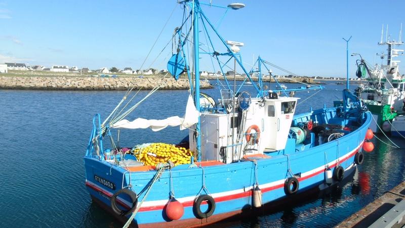 [VIE DES PORTS] Quelques bateaux de pêche (sur nos côtes Françaises) - Page 38 Sardin10
