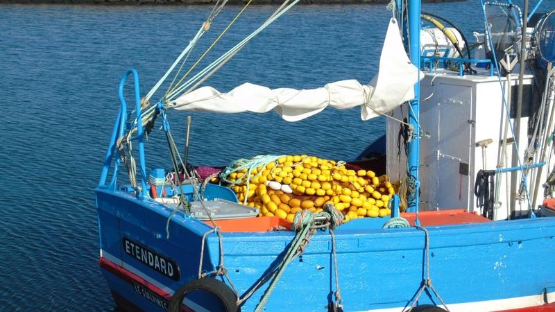 [VIE DES PORTS] Quelques bateaux de pêche (sur nos côtes Françaises) - Page 39 Sardin11