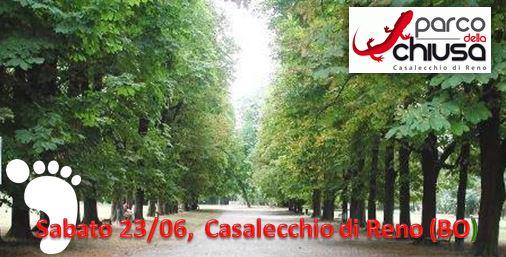 Parco della Chiusa (Casalecchio) - 23 giugno Cattur11