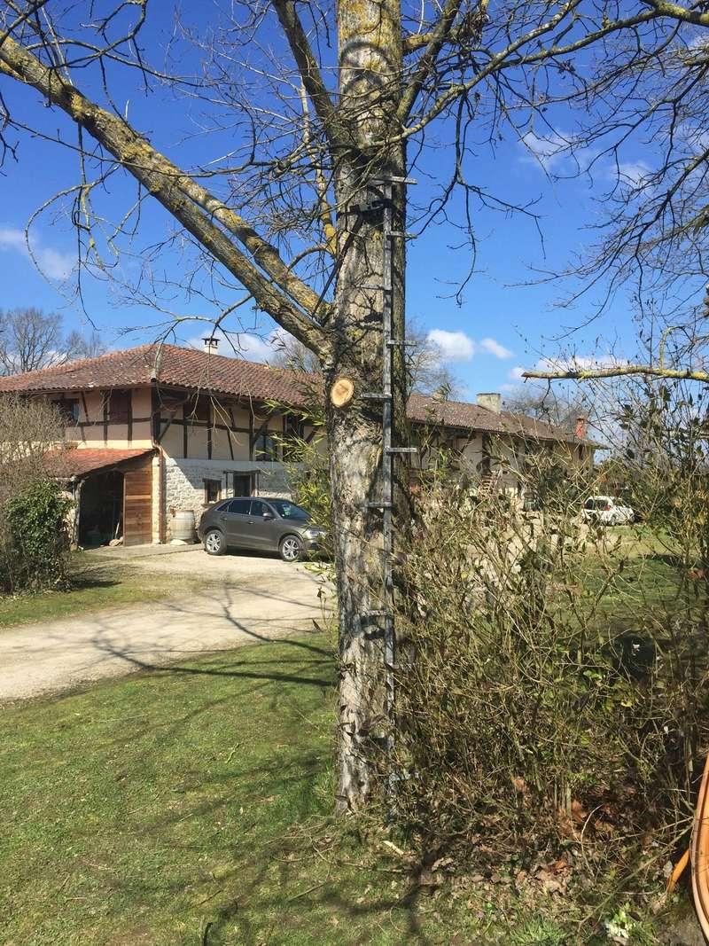 Echelle TS maison Fefd9710