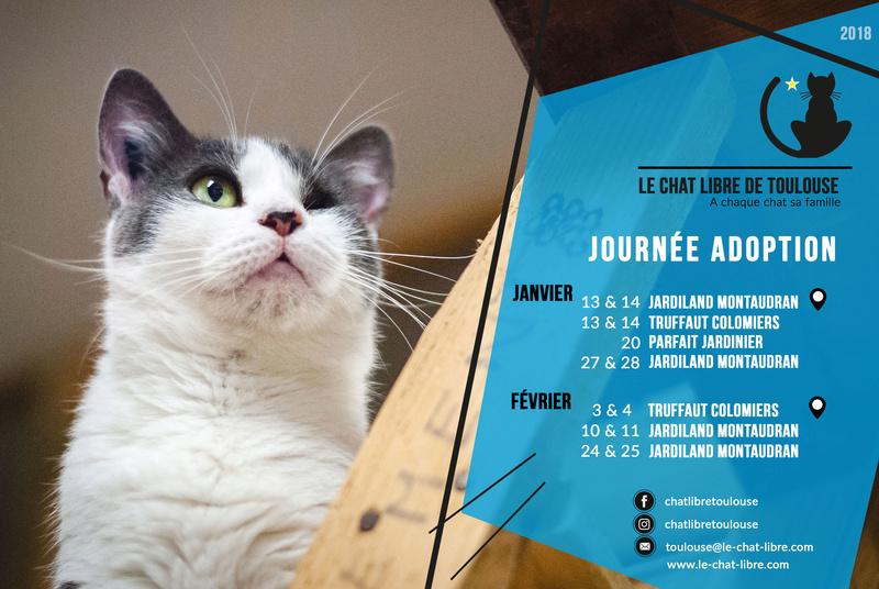 [ Adoptions ] Samedi 10 & Dimanche 11 février 2018 : Jardiland Montaudran Journy13
