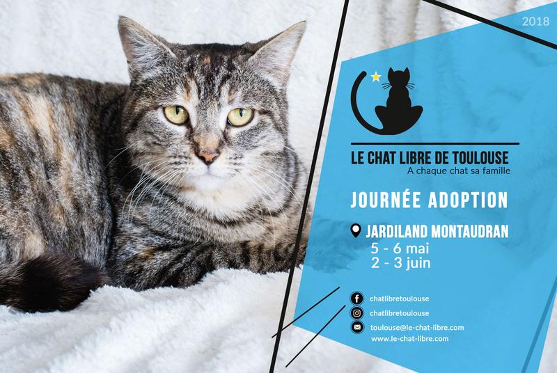 [ Adoptions ] Samedi 2 & dimanche 3 juin 2018 : Jardiland Montaudran Journy21
