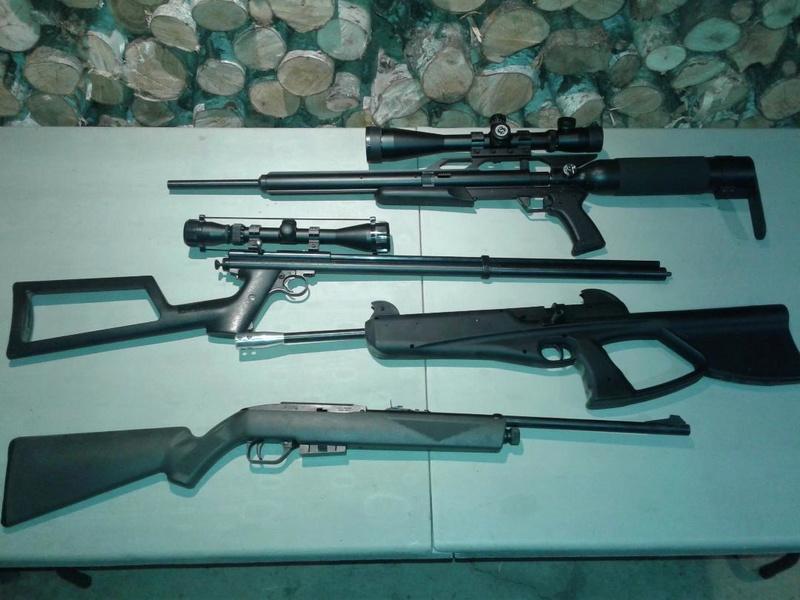 montrez vos guns a air  Airgun14