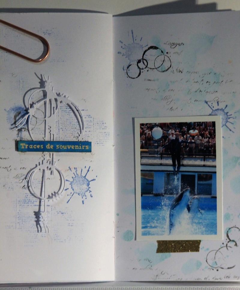 défi Mini Album, 2ème partie - Page 2 Img_2526