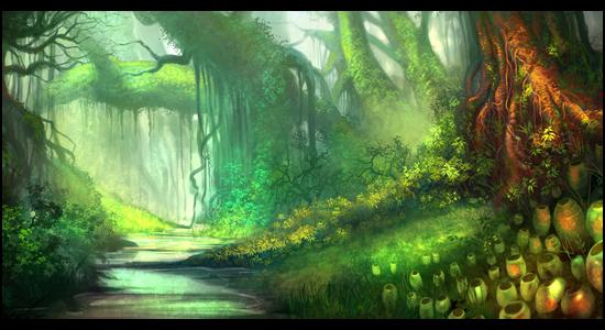 Description des lieux Jungle10