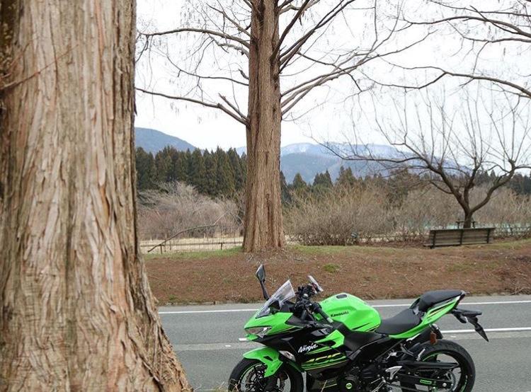 La Ninja 400 en photos - Page 2 61377c10