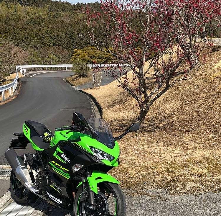 La Ninja 400 en photos - Page 2 Abe53d10