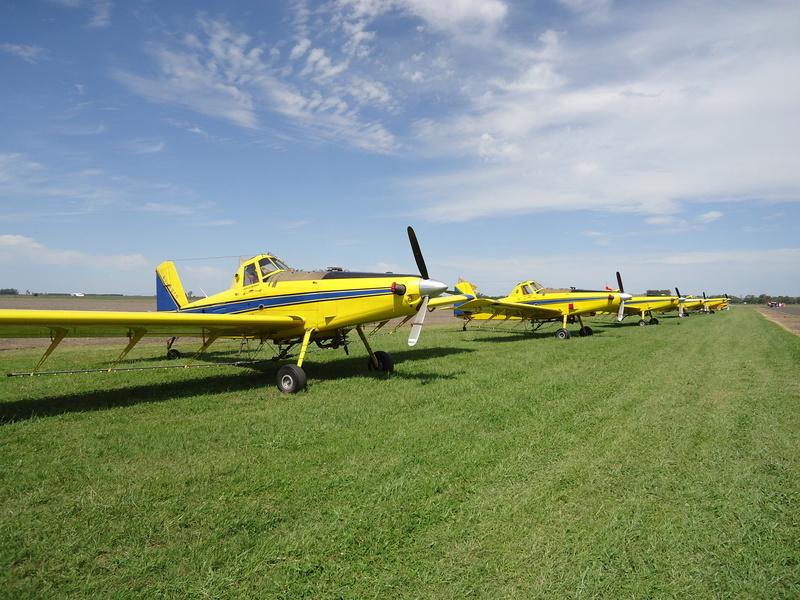 Aeronautical activity in my club! Dsc02910
