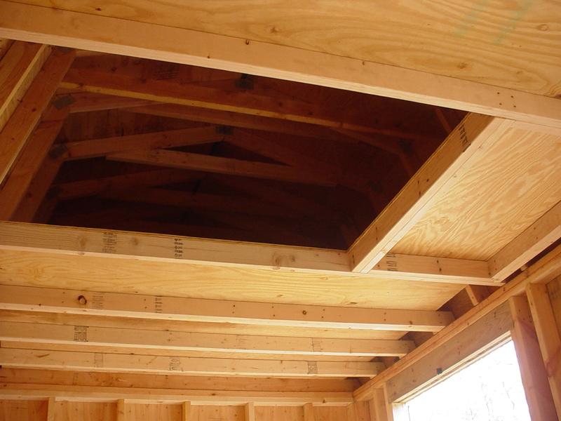 Roddie's new shed thread Dsc05032