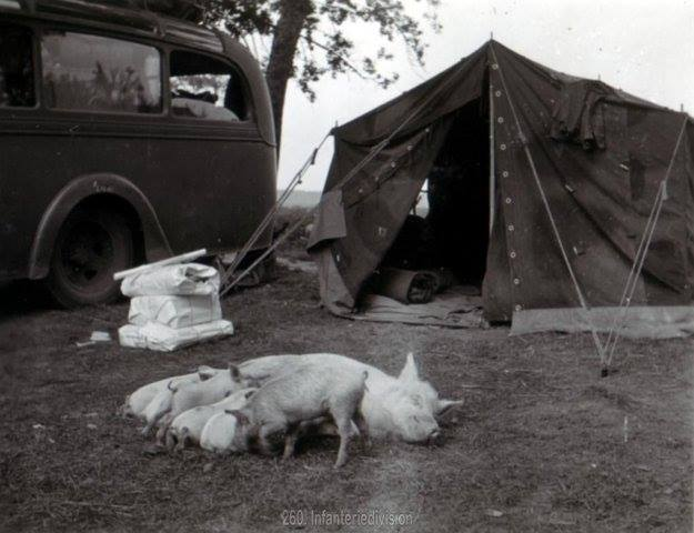 Tente allemande : Das Große Stabszelt 21768010